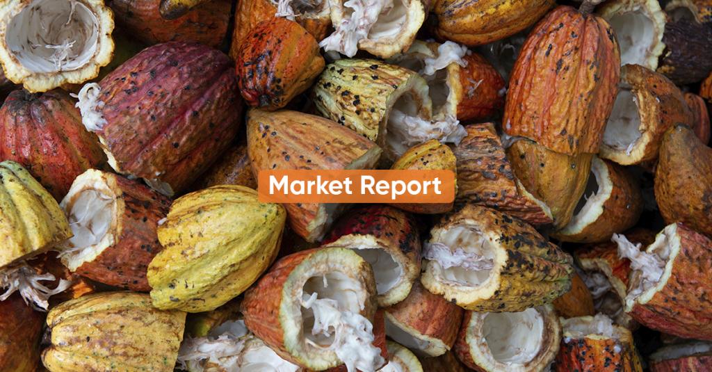 Market report DECEMBER 2020