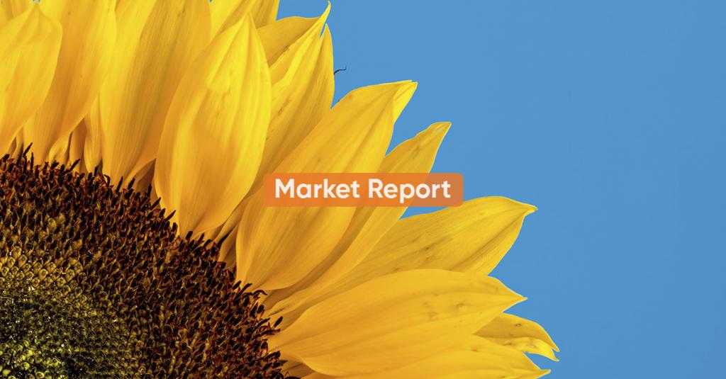 Market report <BR> OCTOBER 2020