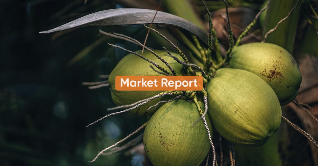 Market report <br> 2H NOVEMBER 2020