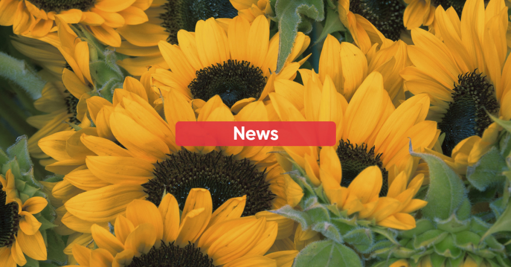 New portfolio of Sustainable Seed Oils