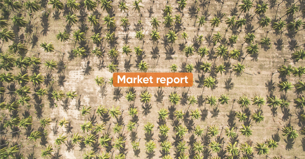 Market report FEBRUARY 2021