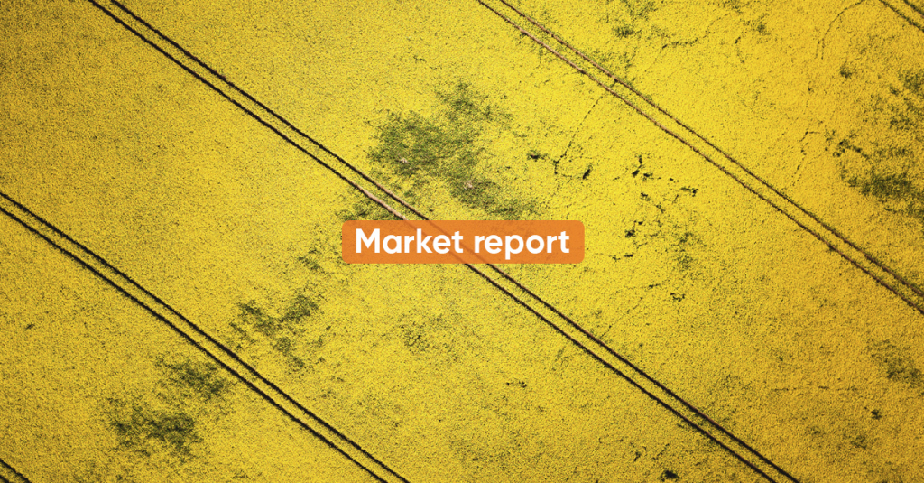 Market report MARCH 2021