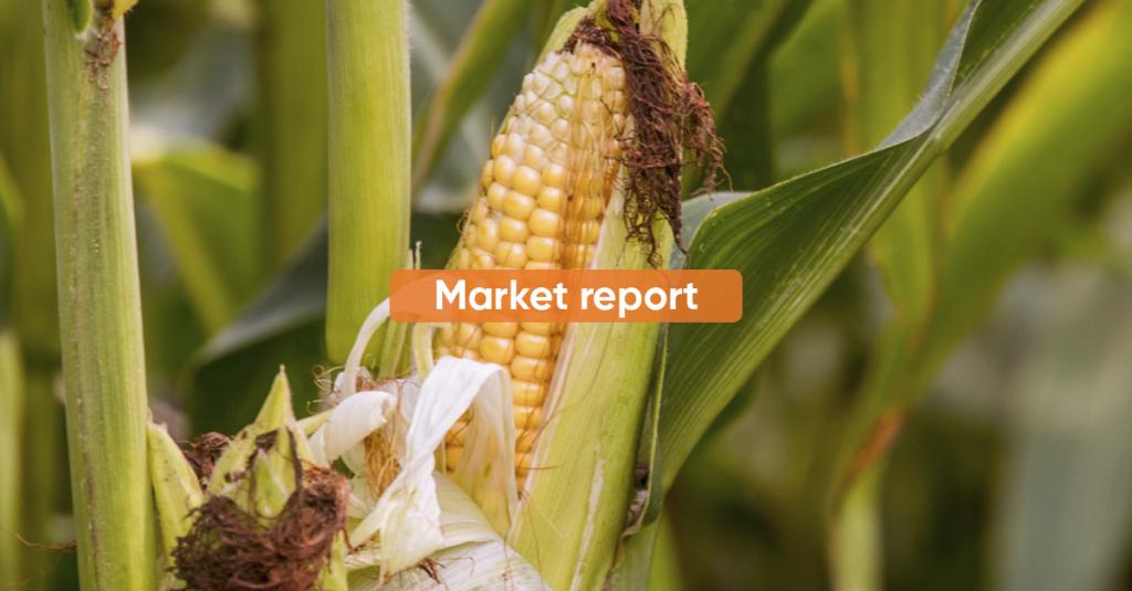 Market report 1H APRIL 2021