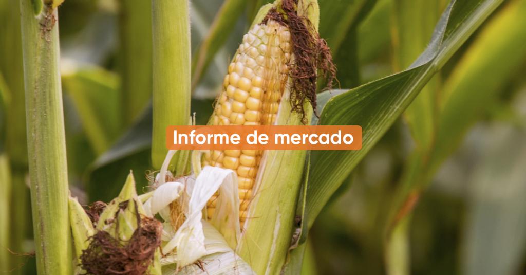 Informe de mercado 1Q ABRIL 2021