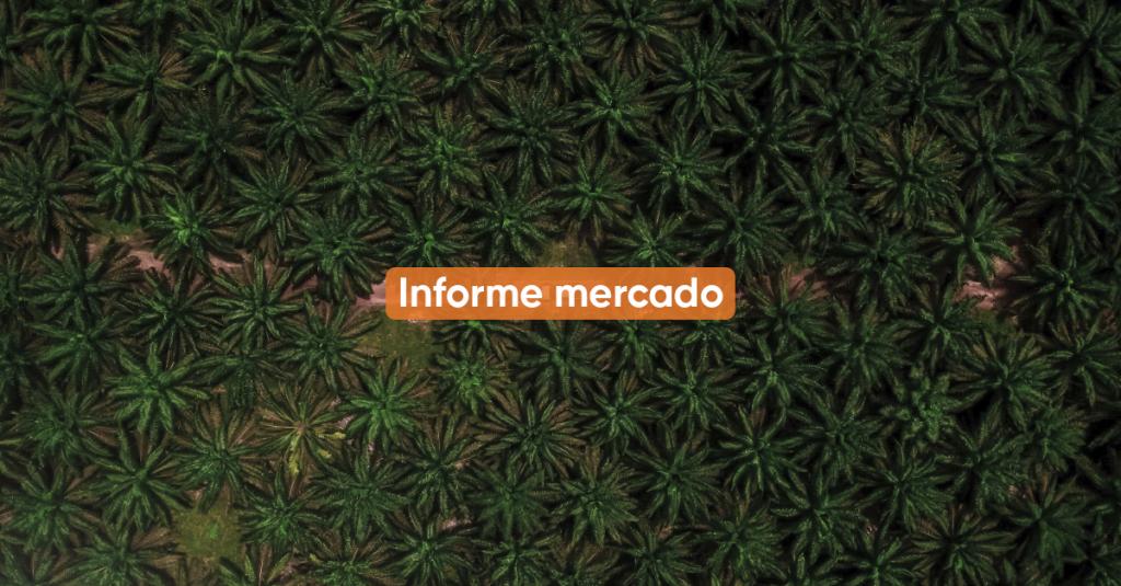 Informe Mercado AGOSTO
