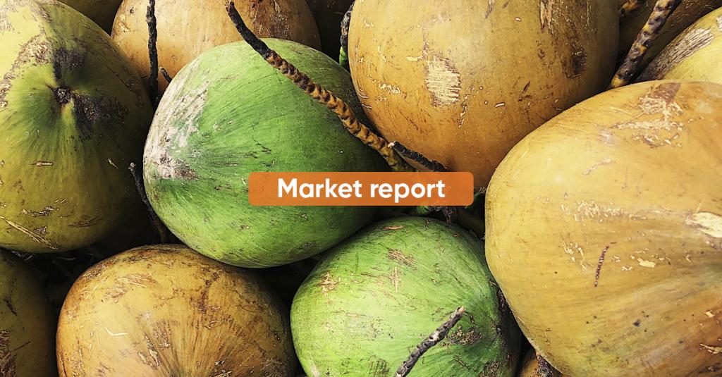 Market Report JULY