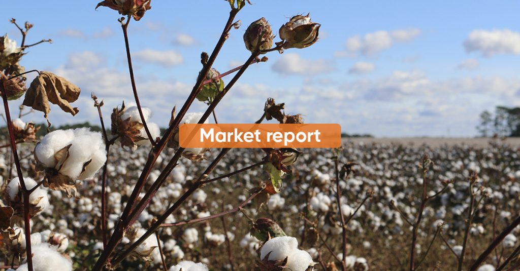 Market Report 2H MAY